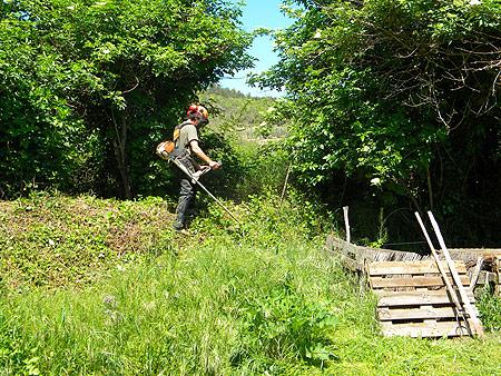 Travaux collectifs au jardin qui redonne for Debroussaillage jardin